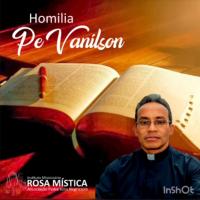 Homilia Pe Vanilson: A realidade e a esperança vivida, deve nos fazer uma pessoa melhor