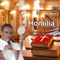 """Homilia do Pe Vanilson: """"A alegria é um dos frutos do Espirito Santo"""""""